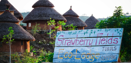 strawberry-fields-eco-lodge_ethiopia